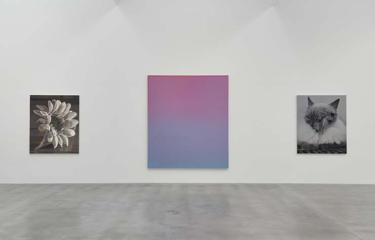 Installation-view_V5_True-Colours_©-Boo-Saville_Courtesy-Newport-Street-Gallery.-Photo-Prudence-Cuming-Associates.jpg