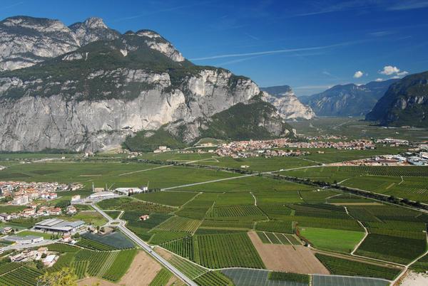 Trentino - Teroldego Rotaliano