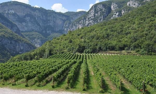 Alto-Adige - Valdadige