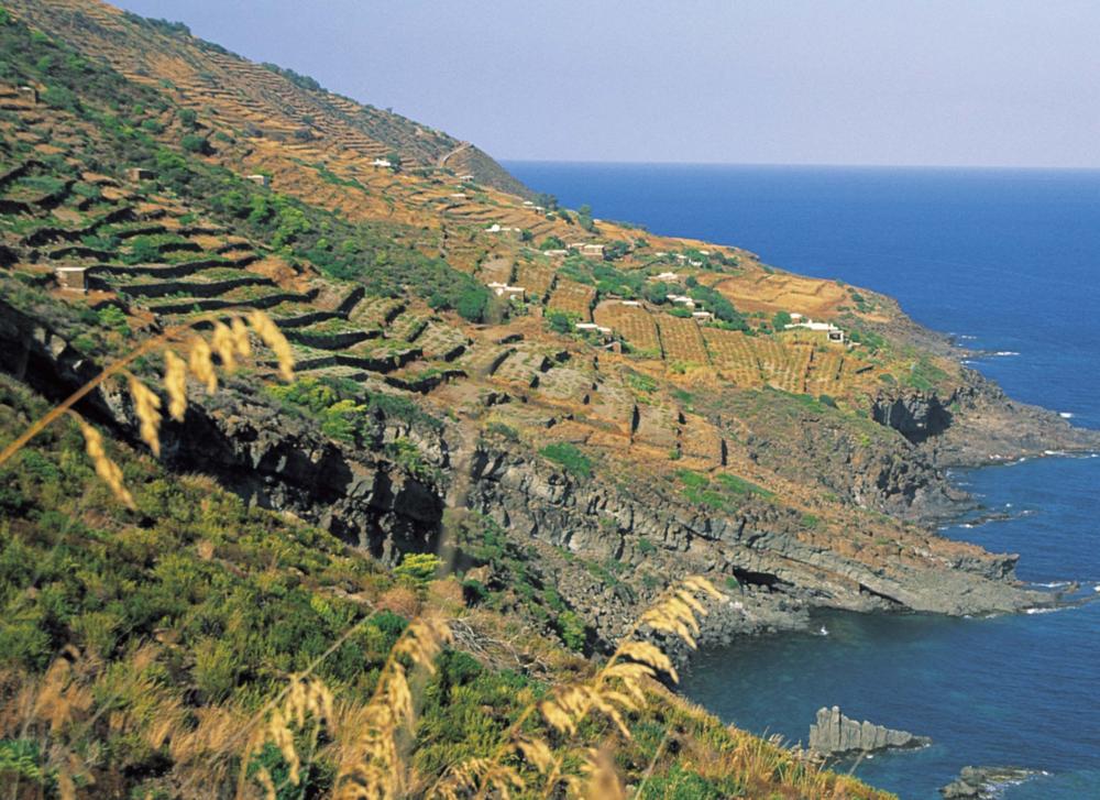 Sicily - Pantelleria