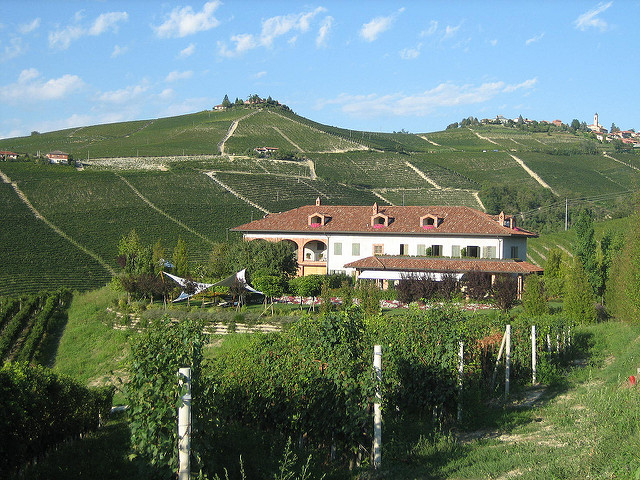 Piedmont - Barbaresco