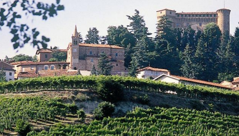 Piedmont - Barbera d'Alba