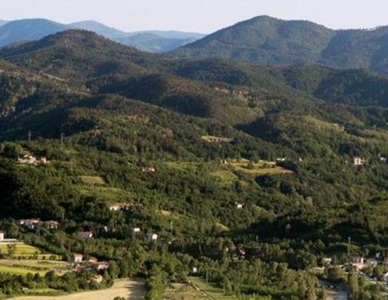 Piedmont - Dolceto di Ovada