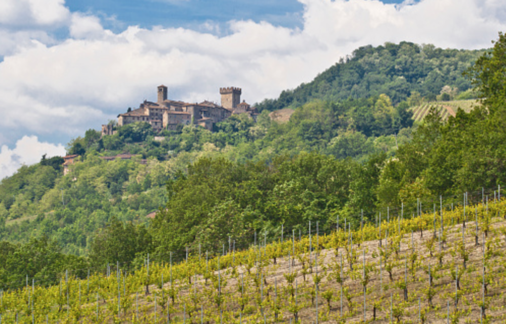 Emilia-Romagna - Ortrugo dei Colli Piacentini