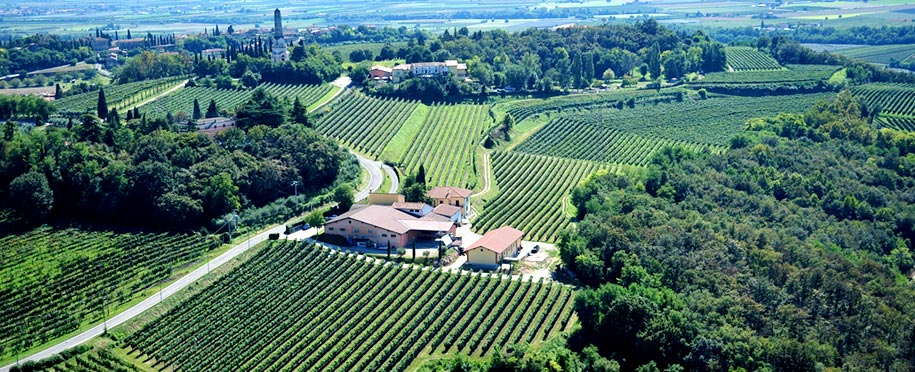 Veneto - Bianco di Custom