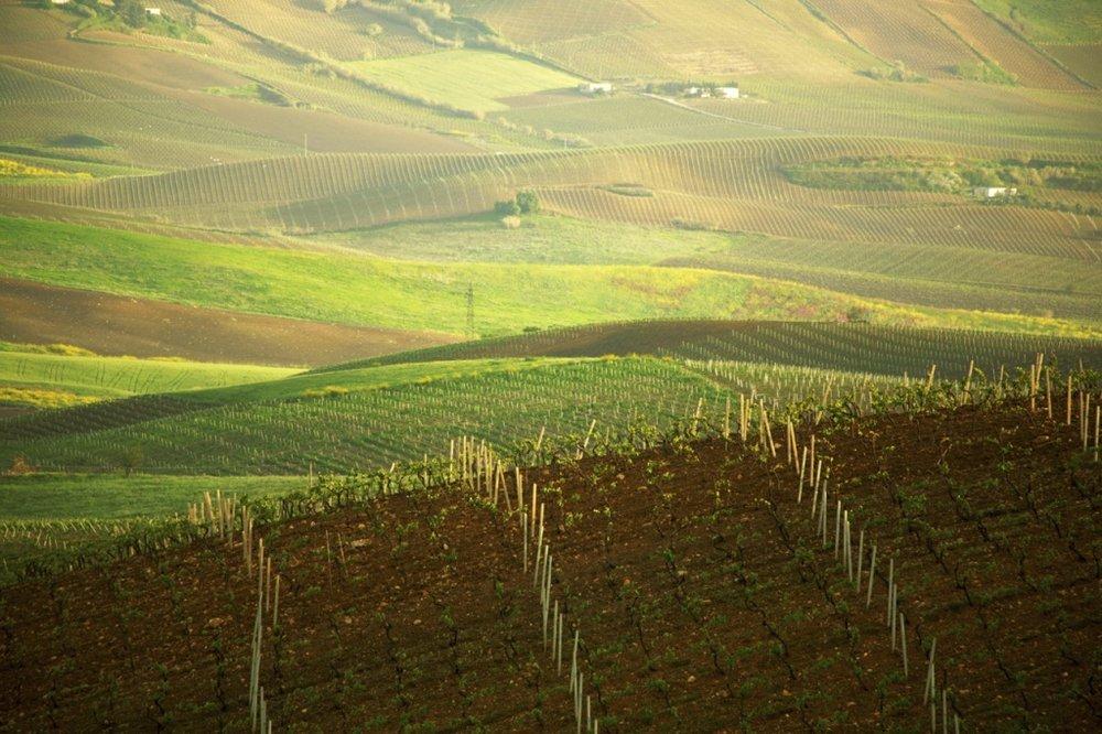Sicily - Contea di Sclafani