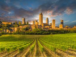 Tuscany - Vernaccia di San Gimignano