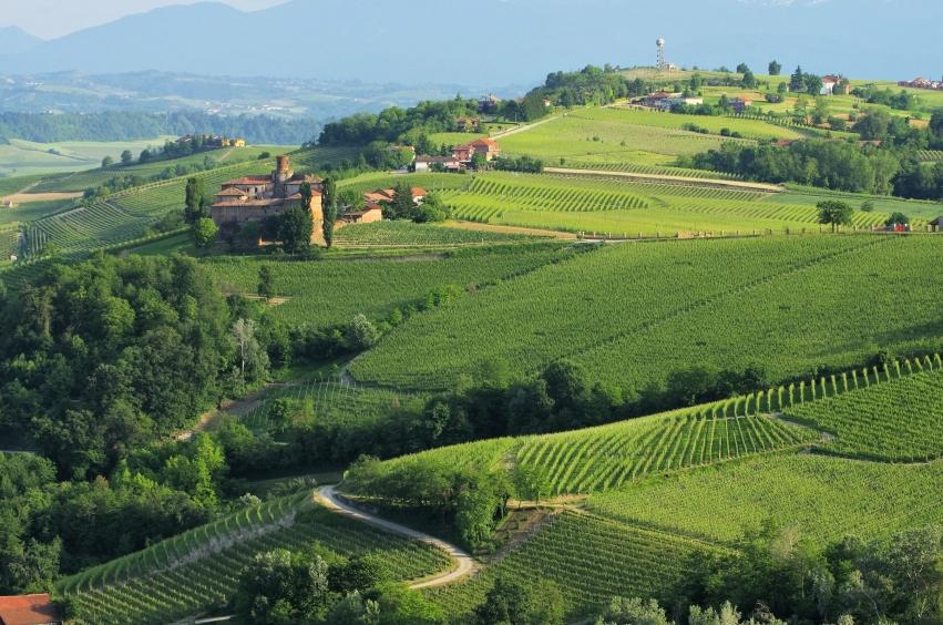 Piedmont - Grignolino d'Asti