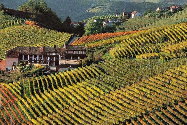 Piedmont - Ruche'di Castagnole Monferrato