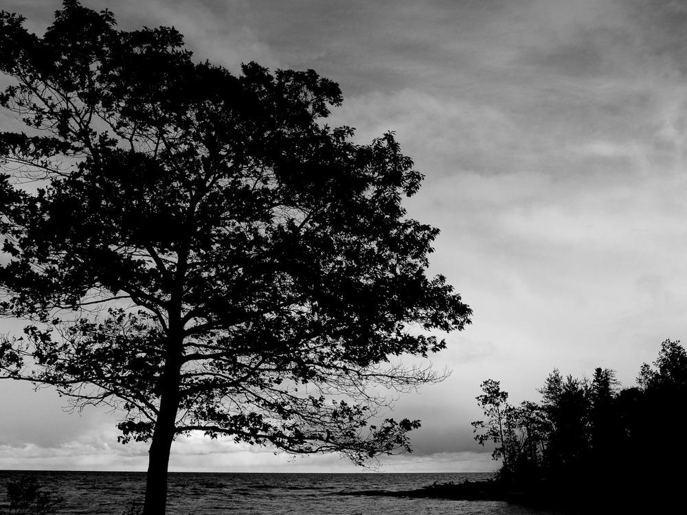landscapes007.jpg