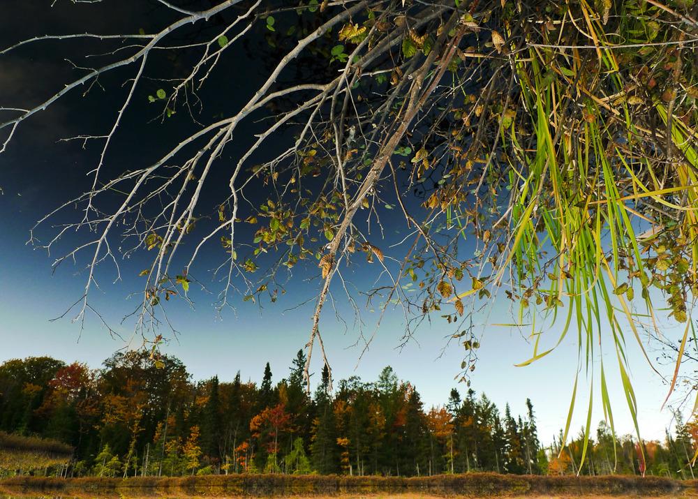 landscapes010.jpg