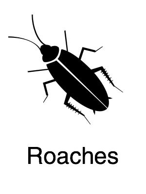 Roaches - Navigation@2x.jpg