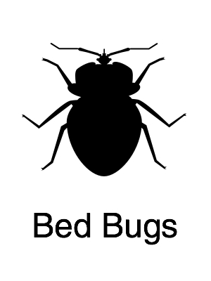 Bed Bug - Navigation@2x.jpg