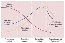 Periodisation hybrid models for team sports athletic for Undulating periodization template