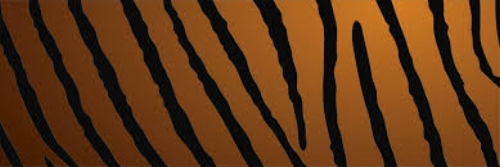 tiger stripes.jpg