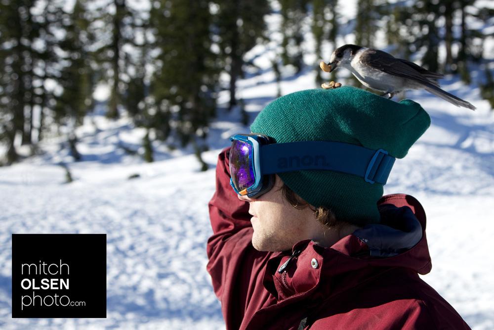 Snowlake-14.jpg