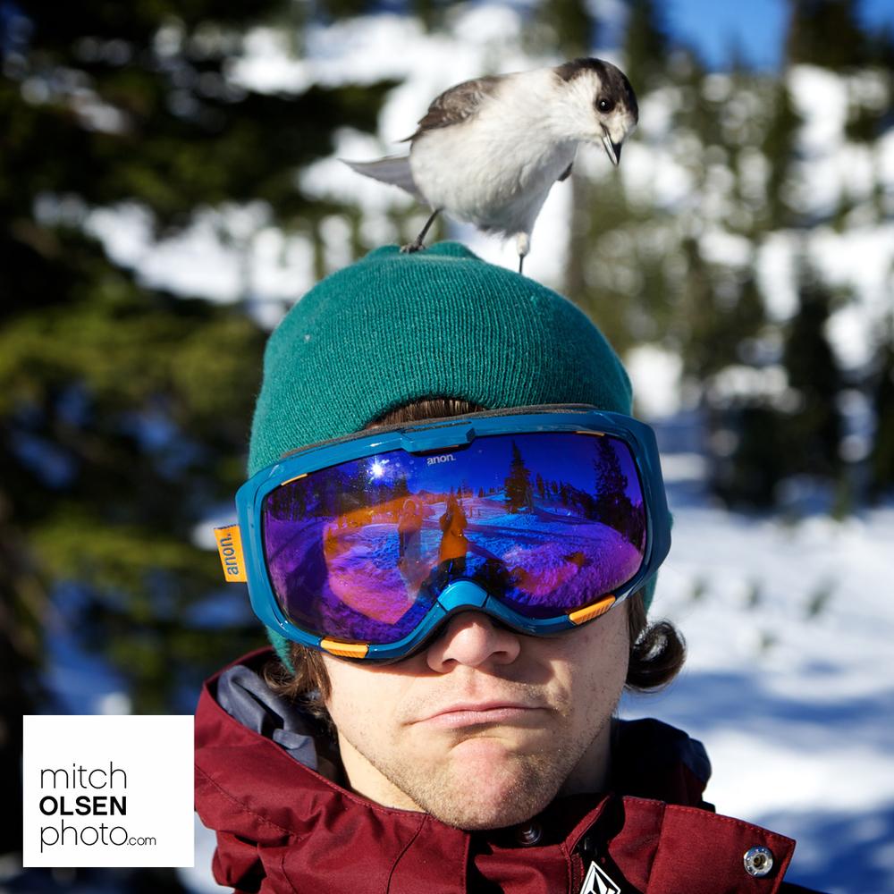 Snowlake-16.jpg