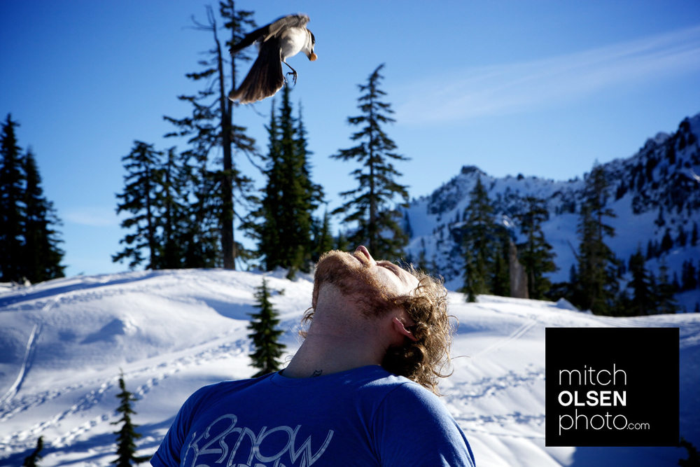 Snowlake-21.jpg