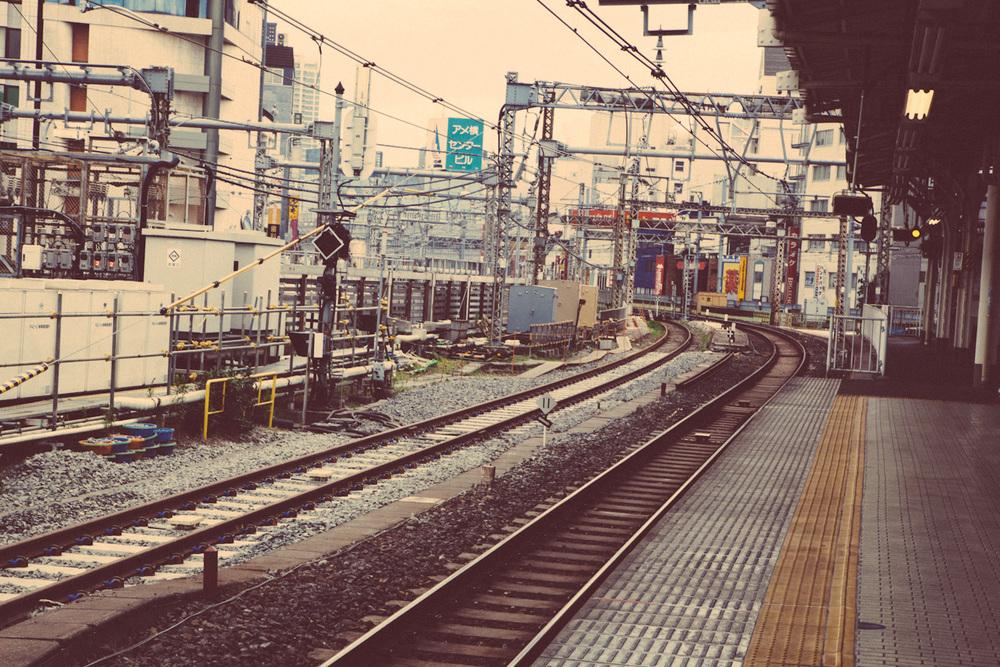 Tokyo&Zoo-13.jpg