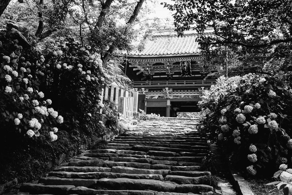 Japan-169.jpg