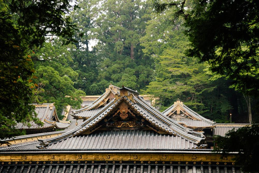 Japan-242.jpg