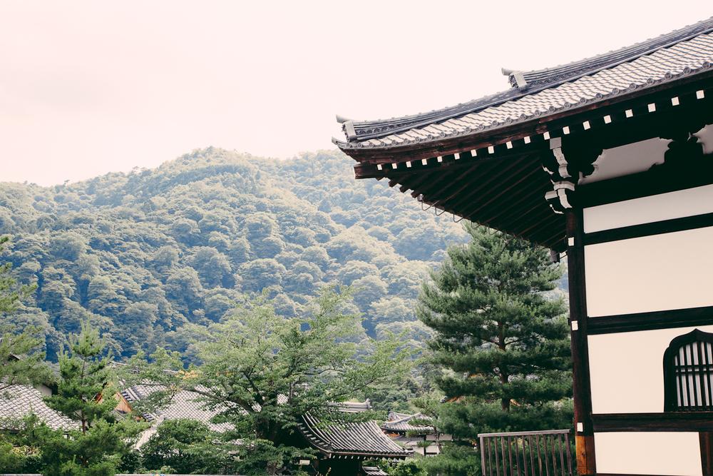 Japan-76.jpg