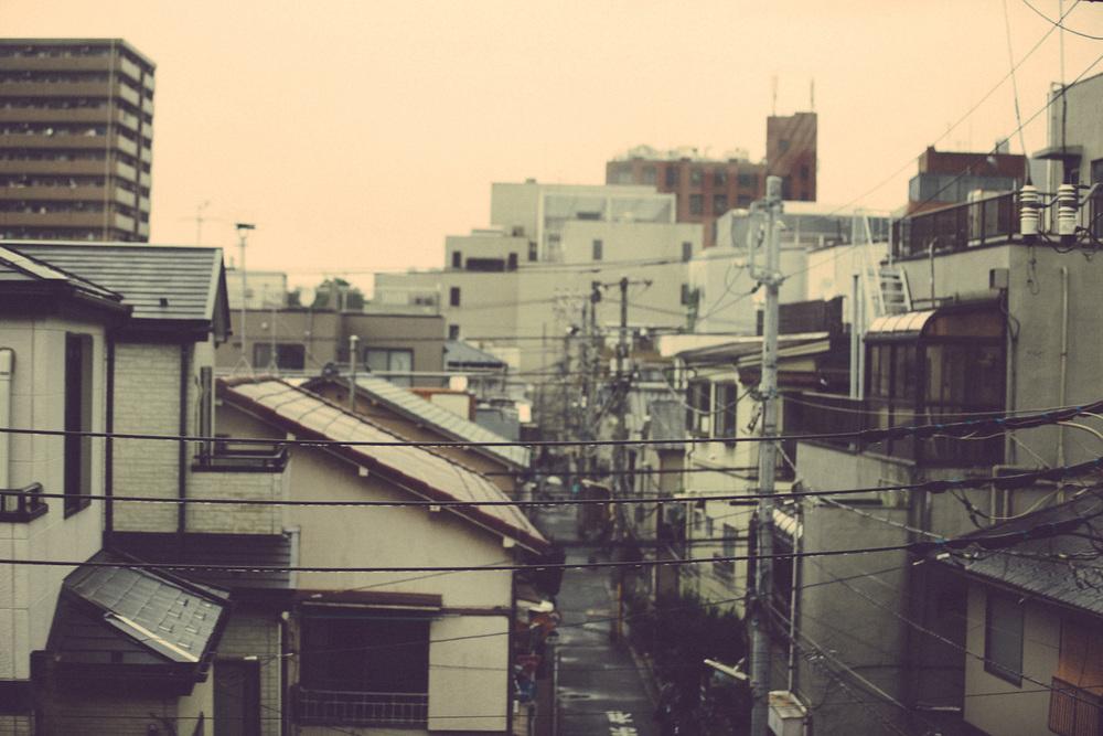 Tokyo&Zoo-291.jpg