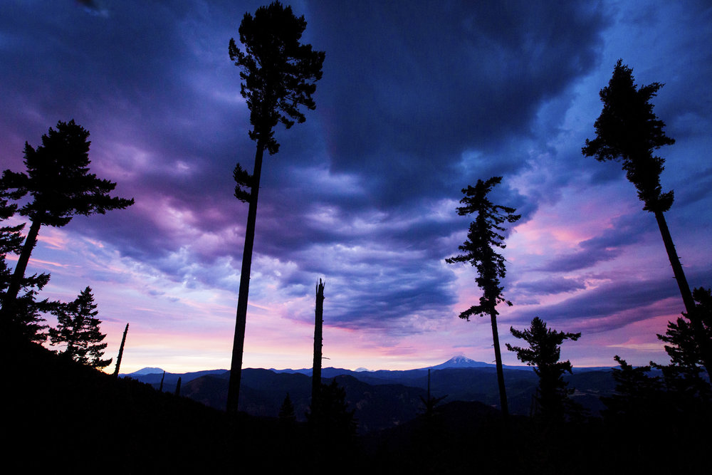 Carl_Zoch_Landscape_054.jpg