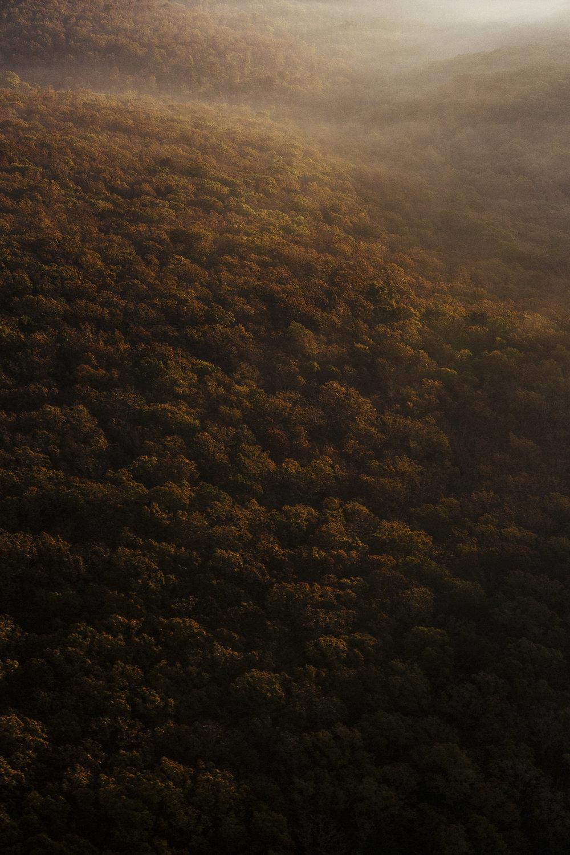 Carl_Zoch_Landscape_083.jpg