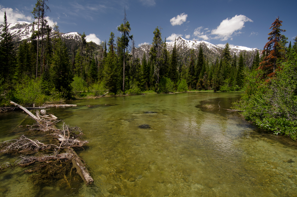 Grand Tetons - Lake Creek