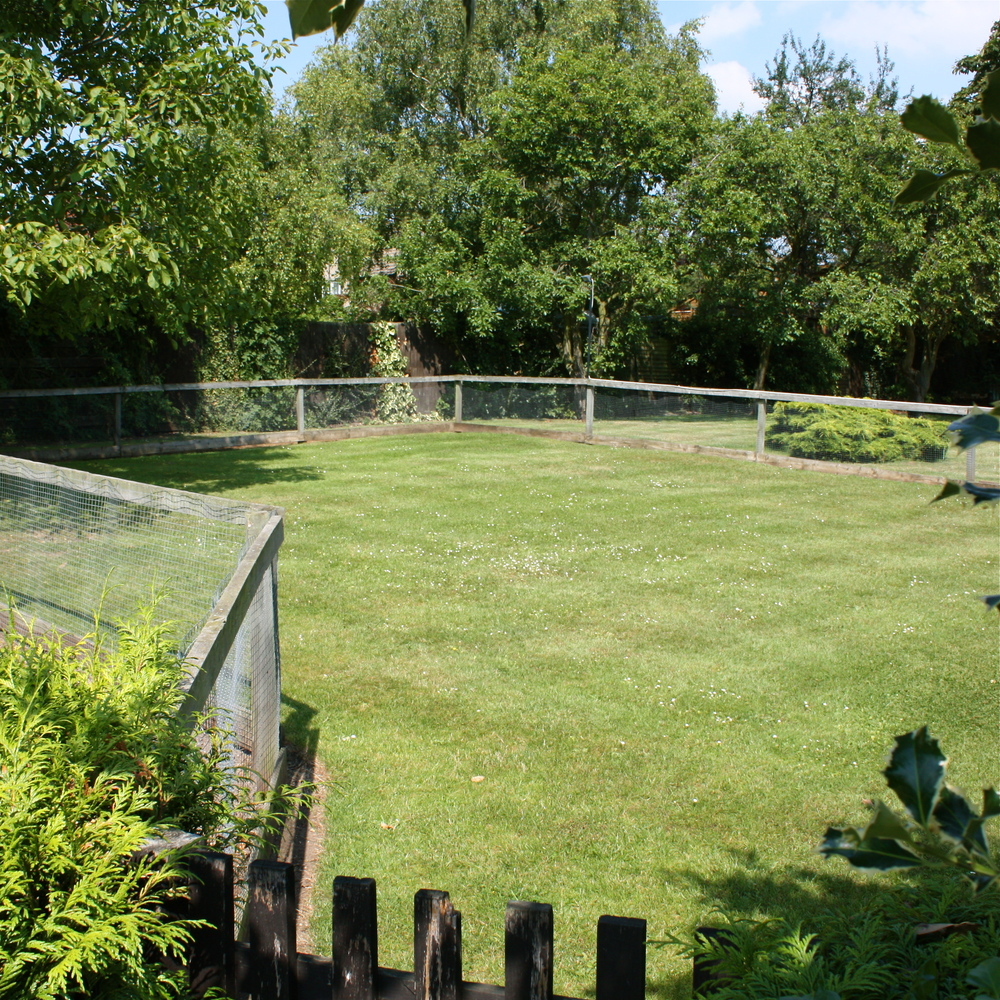 Our Puppy School and Gardens