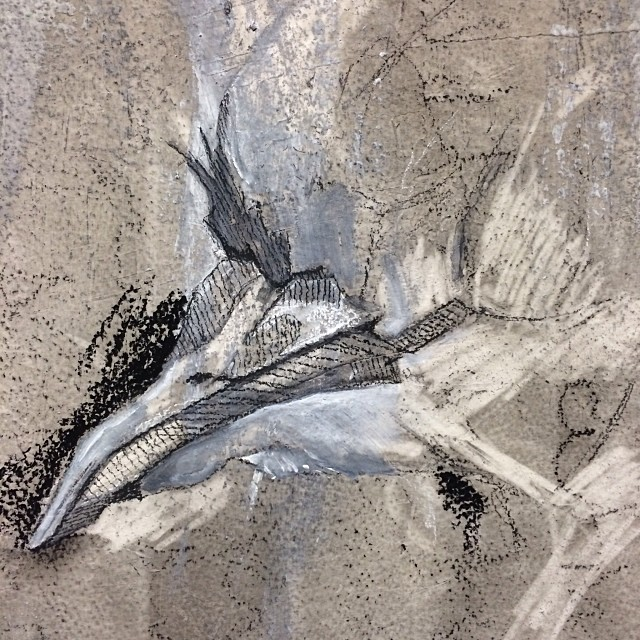 Sketching. #inProgress #sketch #charcoal #art #bird #beak #draw (at Studio 34)