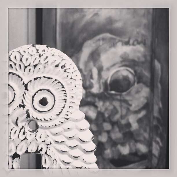 Bird eyes. #prezzy #bird #owl (at Paint Can Studios)