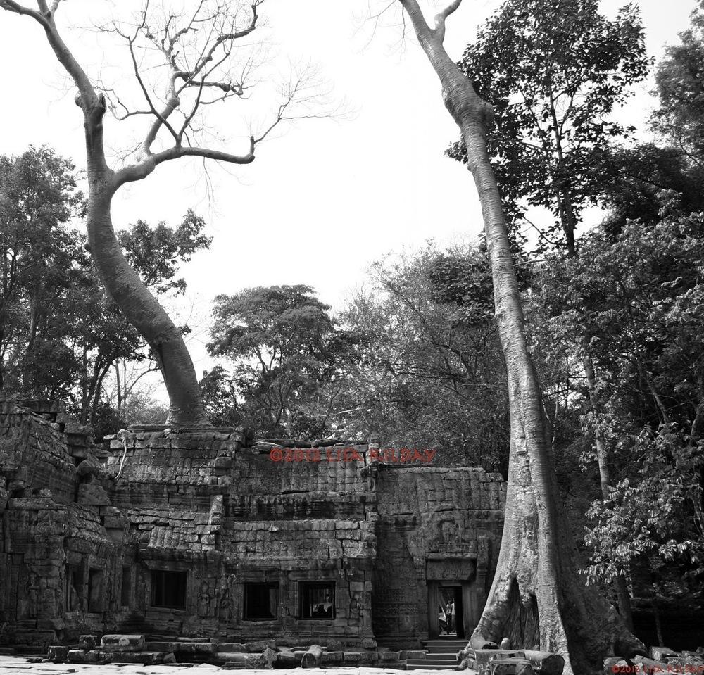 Ta Prom Temple