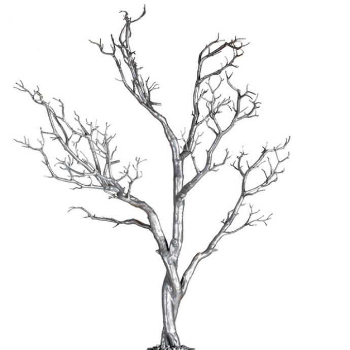 Silver Manzanita Tree - $20.00