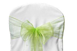 Apple Green Organza - $1.00