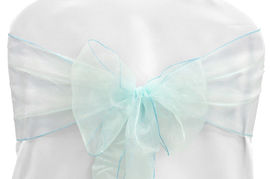 Light Turquoise Organza - $1.00