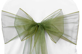 Willow Green Organza - $1.00