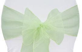 Mint Green Organza - $1.00