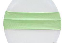 Mint Green Lycra - $1.00