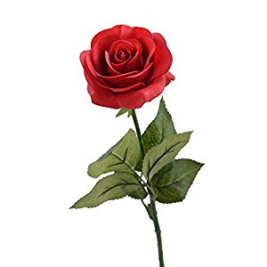 Rose - $1.00 Per Stem