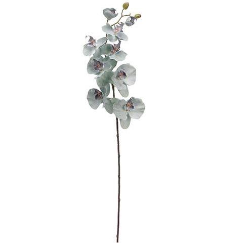 Orchid - $1.00 Per Stem