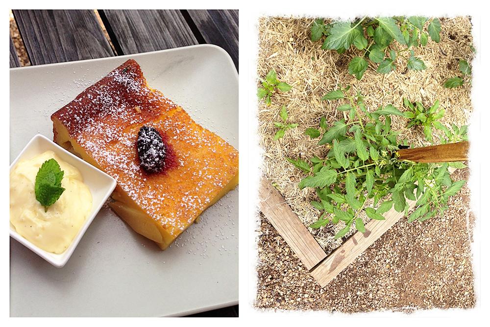 food4_small.jpg