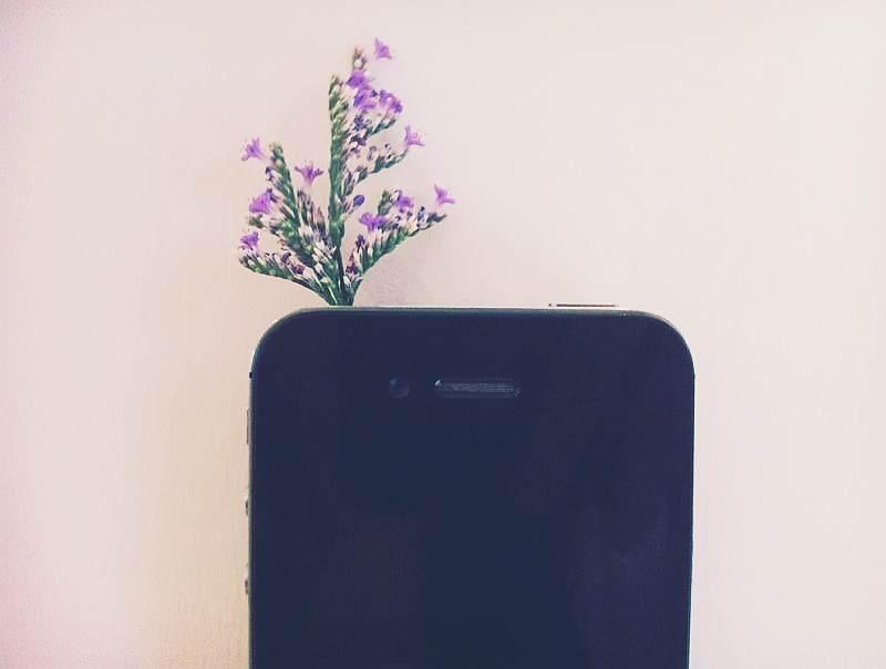 My phone grow flower.
