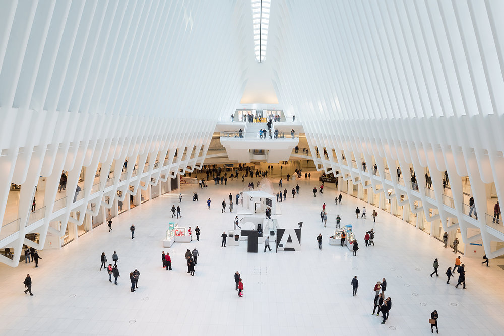 The recently opened Oculus building in NYC houses the transportation hub for the new World Trade Center.