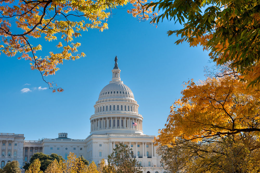 The well-known Capitol dome in Washington, DC, framed by colourful autumn leaves.