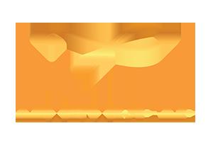 tiokorete gold transparent.png