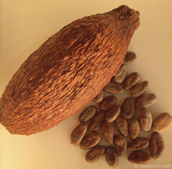 Cabossa e fave di cacao.jpg
