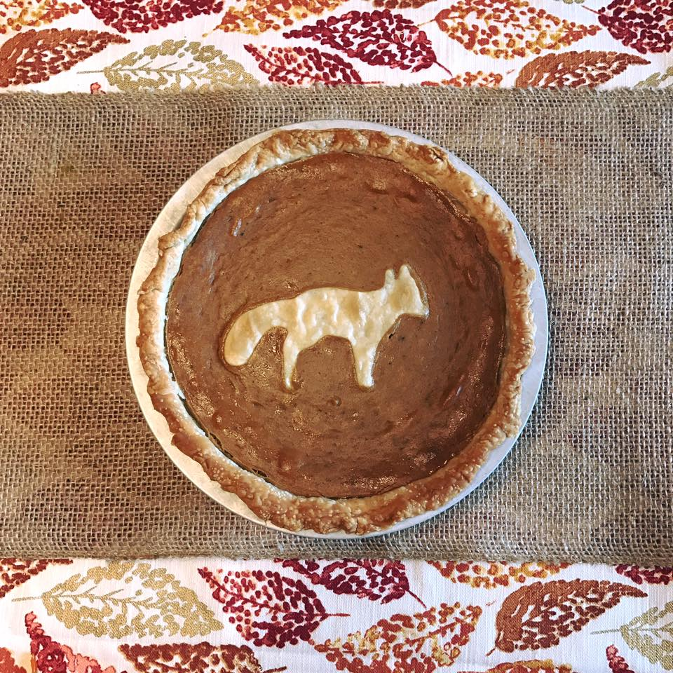 Pumpkin pie with a foxy homage to Mr. Jake!