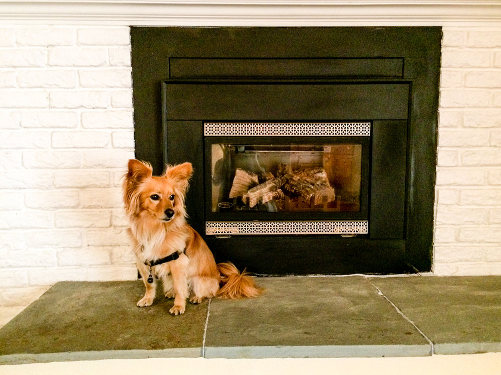 Jake posing in front of the family-room fireplace.